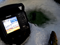 image of Humminbird 597 showing Walleyes