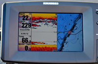 Humminbird Walleyes