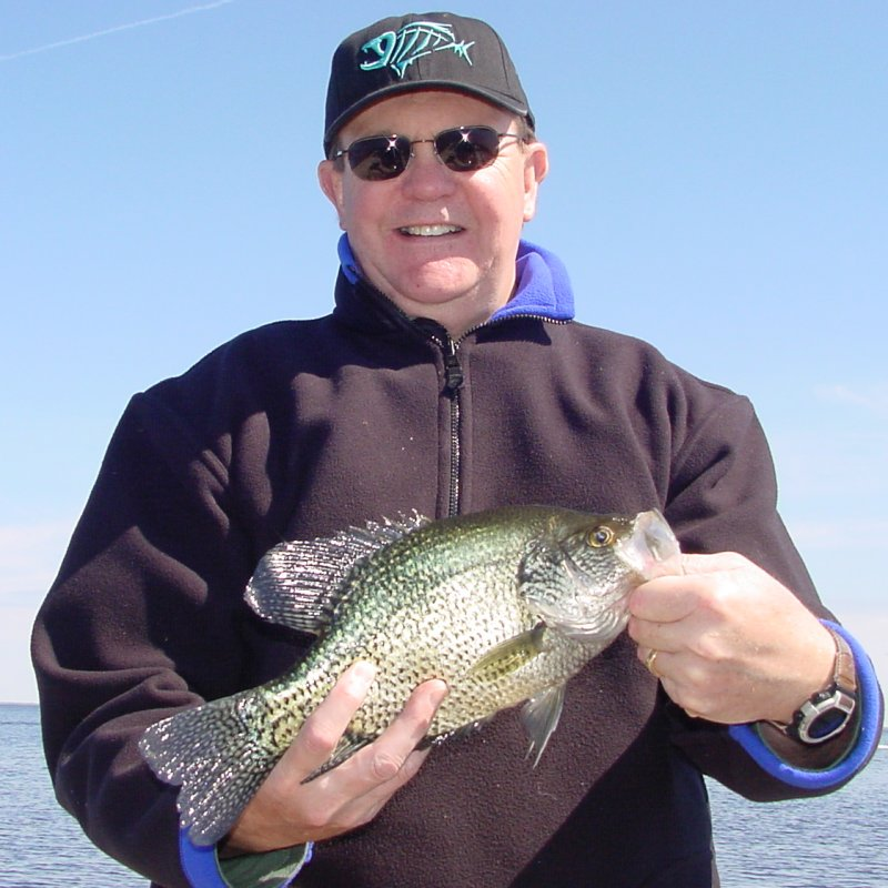 Crappie fish drawing for Crappie fish facts