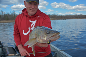 image of fishing guide jeff sundin with rainy river walleye
