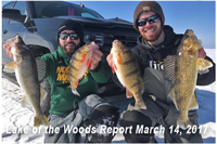 image of ice fishermen with Walleyes and Perch