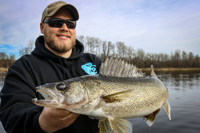image of big rainy river walleye