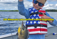 image links to MN DNR News Release about panfish regulations