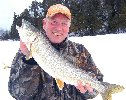Link to Lake Trout Picture