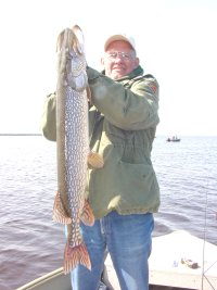 image of jerry volkert with big northern pike
