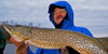 image links to article about northern pike