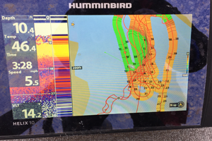 image of hummind helix using Auto Chart
