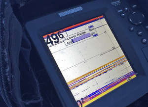 image of crappies on humminbird graph