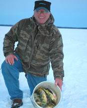 Perch Leech Lake Ice Fishing