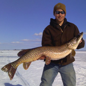 Northern Pike Lake of the Woods