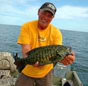 Smallmouth Bass Sundin