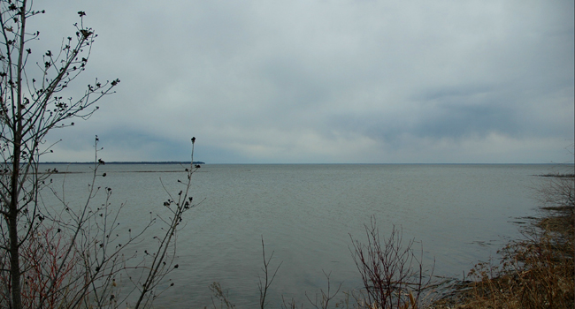 Fish report minnesota mn april 2011 for Lake winnie fishing report