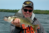 Island Lake Walleye
