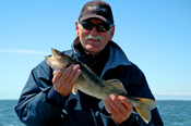 Walleye Leech Lake