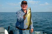 Walleye Lake Winnibigoshish