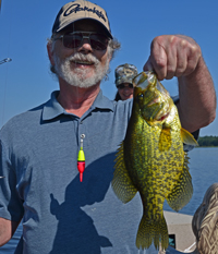 Crappie Fishing Talmoon
