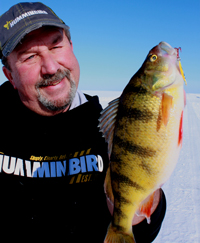 Perch Fishing Leech Lake