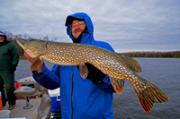 Tim Fiscbach Northern Pike