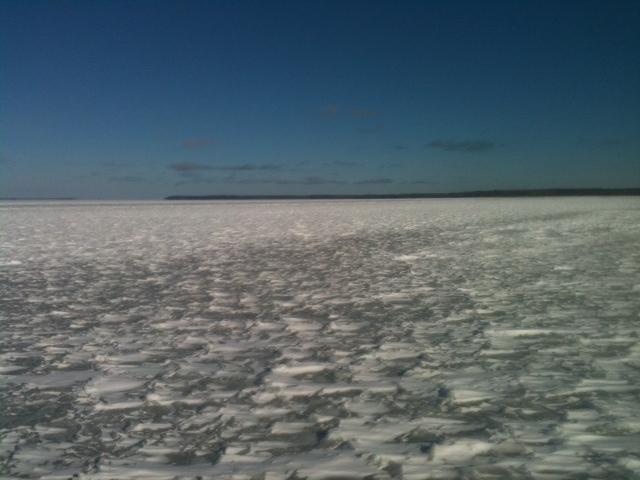 Ice fishing report minnesota fish report february 2013 for Lake winnie fishing report