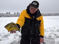 Ice Fishing Sunfish
