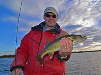 Walleye Fishing Late Fall