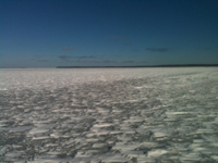 Lake Winnie Ice Conditions