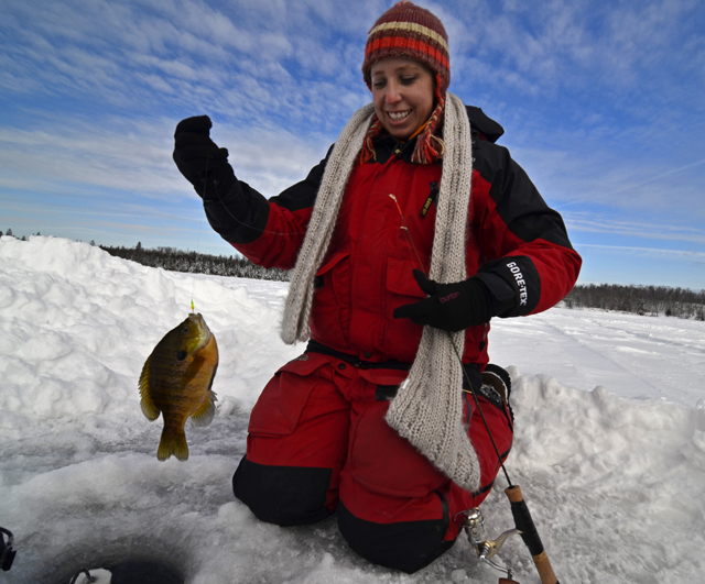 Dimich outdoors fishing report fish reports lake winnie region for Ice fishing bluegill
