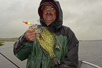 Crappie caught on Leech Lake by Tim Fischbach