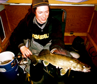Walleye In Wheel House Dimich