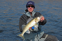 Rainy River Walleye Matt Mattson