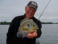 image of fishing guide Jeff Sundin holding nice Bluegill