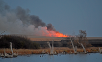 image of CRP grassland being burned