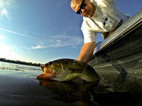 Brett McComas Bass fishing author releases big bass