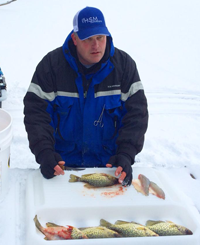 image of Chad Peterson filleting Crappies