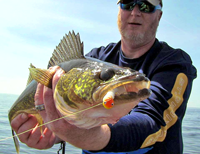 image of Walleye Pro John Mickish holding Walleye