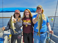 image of three girls holding Walleyes on Red Lake
