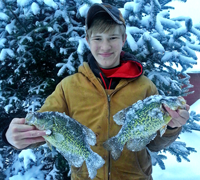 image of Crappies from Ball Club Lake