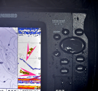 image of Humminbird 597 showing school of active Crappies