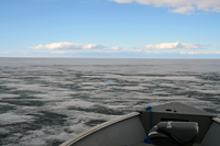 Lake of the Woods ice conditions may 6 2014
