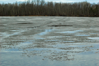 image of Ice Out on Island Lake