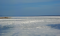 image of ice conditions on Lake Winnie as of November 22