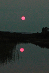 image of red sunset reflecting on water