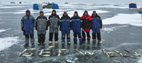 image of ice fishermen with limits of Red Lake Walleyes