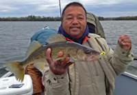 image of Neng Shao holding nice Walleye