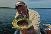daily image that links to the current minnesota fishing report