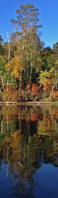 image of fall colors on sand lake