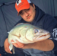 image of Andy Walsh with Lake Winnipeg Walleye