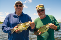 image of larry lashley and Tim Fischbach holding big Crappies