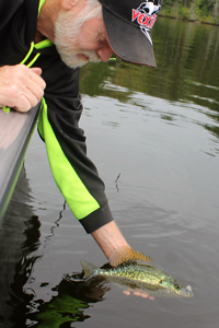 image of greg clusiau releasing crappie