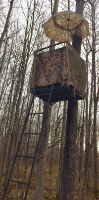 image of deer stand